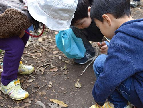 自然体験活動中の子供たち