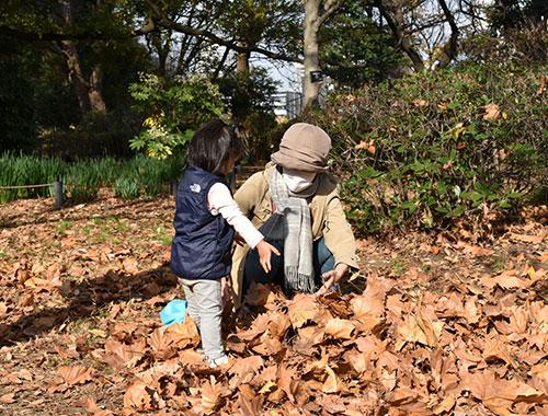 自然や生き物と触れ合う親子
